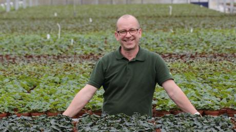 Grün in Grün: Richard Ritter leitet die Gärtnerei in Wallerstein als Dritter mit diesem Namen. Der Betrieb besteht aber bereits seit 1736 und startete als Geschäft für Kraut und Rüben.