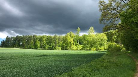 Bei Wind und Wetter: Spaziergänge haben eine entspannende Wirkung.