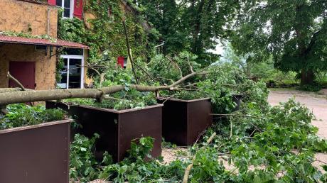 Infolge des Unwetters am Montagabend ist ein Baum auf die Terrasse des Sternelokals Mayers Keller gestürzt.