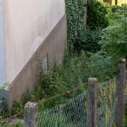 Der Fundort des neugeborenen Mädchens in Kierspe. Foto: Markus Klümper