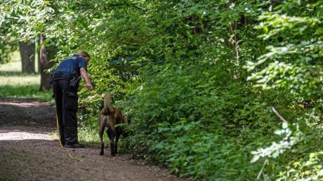 Ein elfjähriges Mädchen wurde in München am hellichten Tag von einem Mann, der eine Wolfsmaske trug, in diesem Waldstück vergewaltigt.