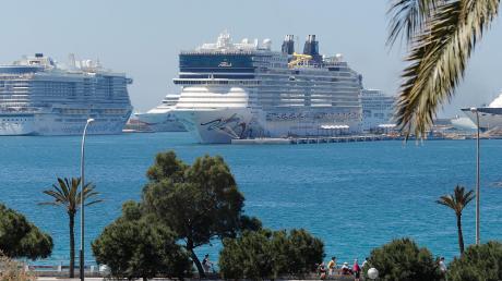 Die Kreuzfahrtschiffe AIDAnova, Norwegian Epic und Celebrity Constellation im Hafen von Palma de Mallorca. Nach Prognosen der Hafenbehörde der Balearen werden in diesem Jahr rund 1,75 Millionen Menschen mit Kreuzfahrtschiffen auf die Insel kommen.