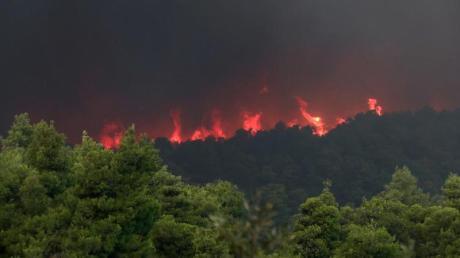 Nach wochenlanger Dürre sind in Griechenland zahlreiche Waldbrände ausgebrochen. Foto: Yorgos Karahalis/AP