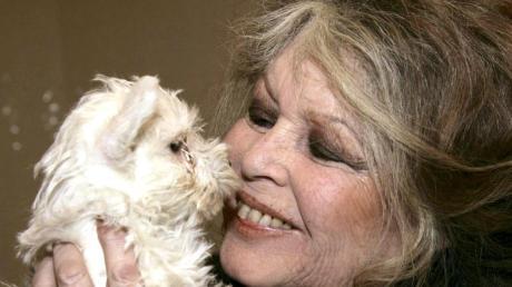 Seit Jahren kämpft die Französin Brigitte Bardot für den Tierschutz.