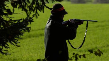 Ein Jäger steht während einer Treibjagd mit seinem Gewehr schussbereit am Waldrand. Im Prozess um einen Jäger, der zwei freilaufende Hunde erschossen hatte, ist in Augsburg ein Urteil gefallen. Symbolbild: Felix Kästle Foto: Felix Kästle