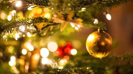 In Günzburg-Riedhausen findet zum sechsten Mal die Günzburger Alpaka-Weihnacht statt.