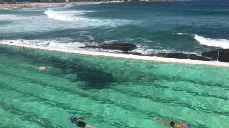 Das Meerwasser-Schwimmbecken «Icebergs» am Bondi Beach gehört zu den bekanntesten Swimming Pools der Welt. Foto: Christoph Sator/dpa