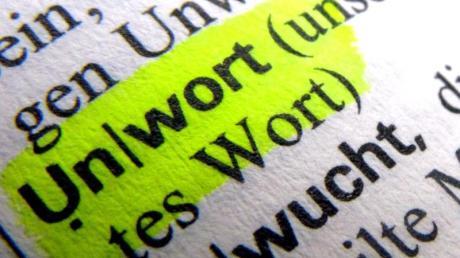 Das Wort «Unwort» ist in einem Wörterbuch zu lesen. Foto: Stephan Jansen/dpa/Illustration