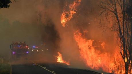 Feuerwehrleute kämpfen gegen die Buschfeuer in der Nähe von Coffs Harbour in Australien an. Foto: Dan Peled/AAP/dpa