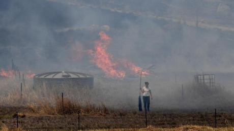 Buschbrände halten die Bundesstaaten New South Wales und Queensland seit Oktober in Atem, beide Regionen haben den Notstand ausgerufen. Foto: Dean Lewins/AAP/dpa