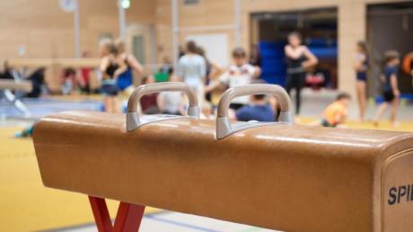 Ein Pauschenpferd steht in der Sporthalle einer Grundschule. Der Deutsche Lehrerverband hat sich gegen Veränderungen am Sportunterricht ausgesprochen.