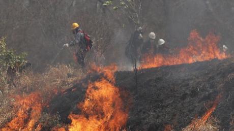 Polizei und Feuerwehrleute versuchen, ein Feuer im Chiquitano-Wald am Rande zu löschen.