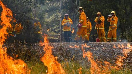 Die Buschfeuer in Australien haben nach Behördenangaben bereits mehrere Millionen Hektar Land verbrannt.