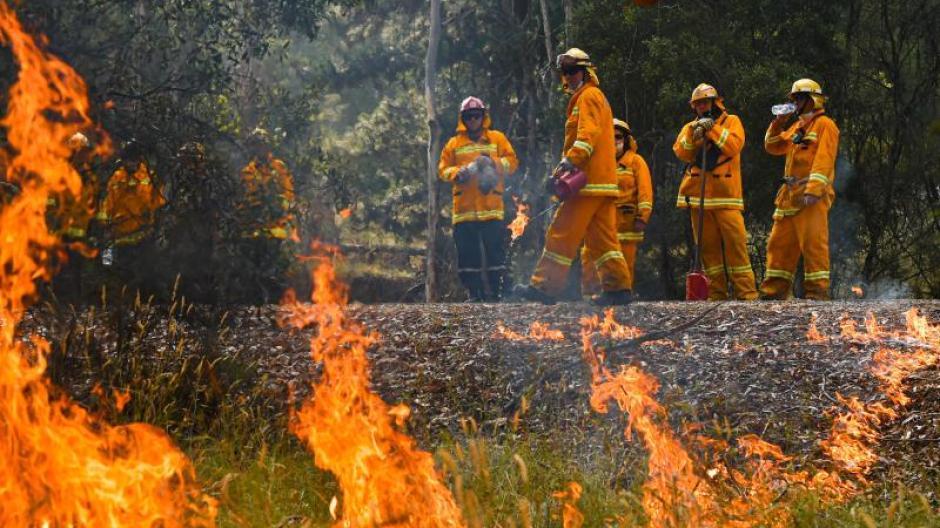 Buschfeuer in Australien: An vielen Orten der Welt kommt es immer wieder zu großen Waldbränden.