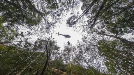 Ein Hubschrauber über dem Wollemi National Park im Bundesstaat New South Wales.