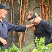 Dschungelcamp 2020 Vorschau: In Folge 9 am 18.1.20 muss Danni erstmals nicht zur Dschungelprüfung. Markus Reinecke geht für sie auf Sternejagd.