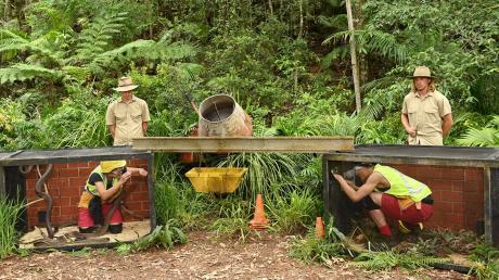 Dschungelcamp 2020 News am 20.1.20: In der Dschungelprüfung versagten Sonja Kirchberger und Prince Damien auf voller Linie. Alle Infos im News-Blog.