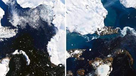 Die Kombo aus zwei Satellitenbildern zeigt das Schmelzen auf der Eiskappe der Insel Eagle Island in der Antarktis.