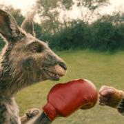 """Die """"Die Känguru-Chroniken"""" startet heute am 2. Juli 2020 erneut im Kino - mit einer zusätzlichen 3D-Szene. Alle Infos zu Handlung, Besetzung, Trailer, FSK und Länge: hier."""