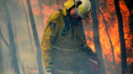 Die Brände hätten eine Fläche von rund 5,5 Millionen Hektar zerstört, etwa 6,2 Prozent des im Südosten von Australien gelegenen Bundesstaates New South Wales.