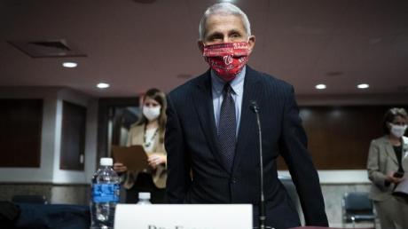 Anthony Fauci vor einem Ausschuss des US-Senats.