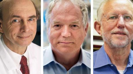 Die Bildkombo zeigt Harvey J. Alter (l-r), Michael Houghton und Charles M. Rice.