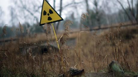 Ein Strahlenwarnzeichen steht in der Sperrzone um das explodierte Atomkraftwerk Tschernobyl auf einem Feld. Der vierte Block des sowjetischen Atomkraftwerks Tschernobyl war am 26. April 1986 bei einem missglückten Experiment explodiert. In Donauwörth findet am Dienstag eine Mahnwache statt.