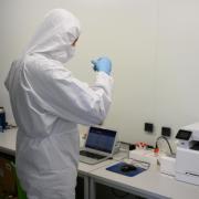 In Augsburg wurde eine ausgerottet geglaubte Virus-Variante entdeckt.