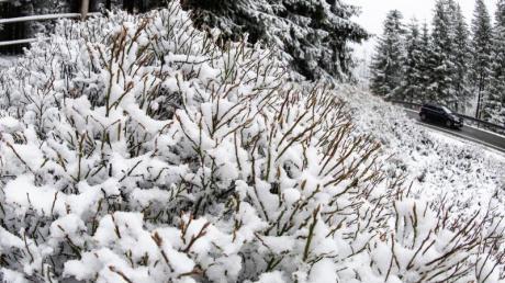 An diesem Freiatg gab es im Harz nochmal Schnee.