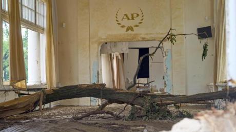 Im Kursaal von Bad Neuenahr hat die Flut einen Baum angespült.