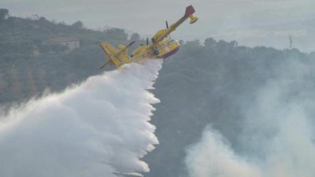 Ein Löschflugzeug beim Einsatz gegen die Flammen.