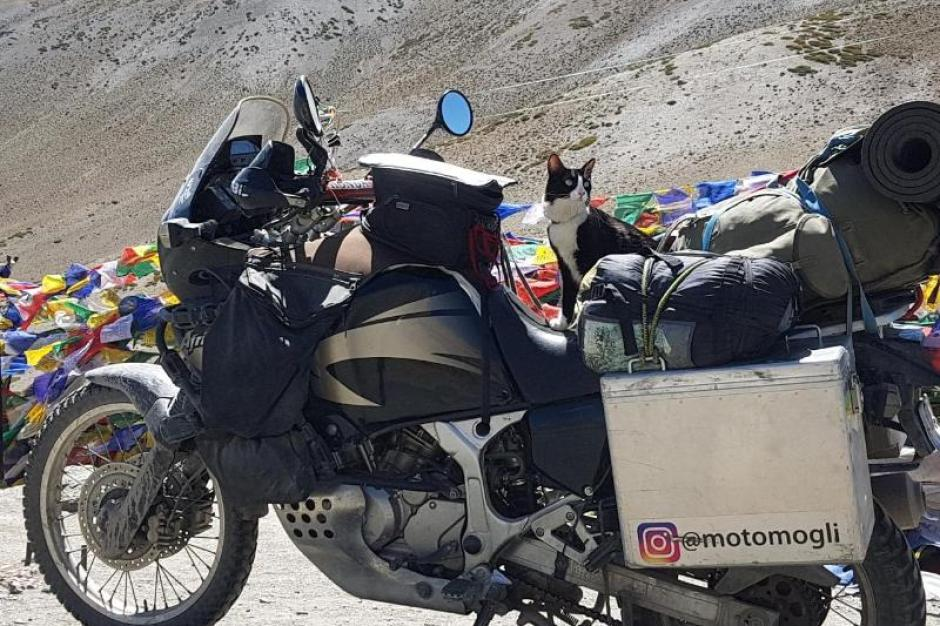 motorrad bekanntschaft privat dertour australien zum kennenlernen