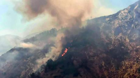 Feuer im Nationalpark Aspromonte in Kalabrien.