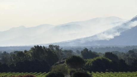 Rauch steigt über einem Wald nahe Gonfaron auf.