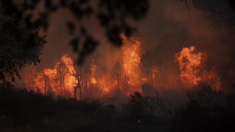 Tausende Anwohner und Touristen mussten vor den Bränden in Südfrankreich fliehen.