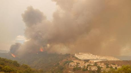 Bäume brennen in der Nähe von Estepona.