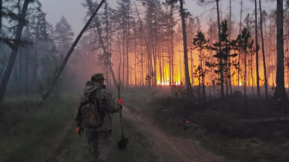Waldbrände: Umweltschützer: Waldbrände in Russland