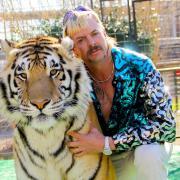 Der Zoodirektor Joe Exotic ist auch in Staffel 2 der Netflix-Serie zu sehen.