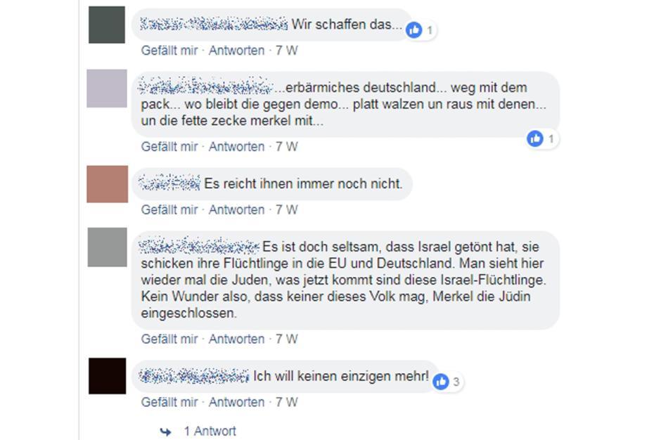 So kommentieren die AfD-Anhänger im Internet - Politik - Aktuelle ...