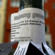 In begehrten Wohngegenden ein vertrauter Anblick:Wohnungssuche am Laternenpfahl. Foto: Oliver Berg