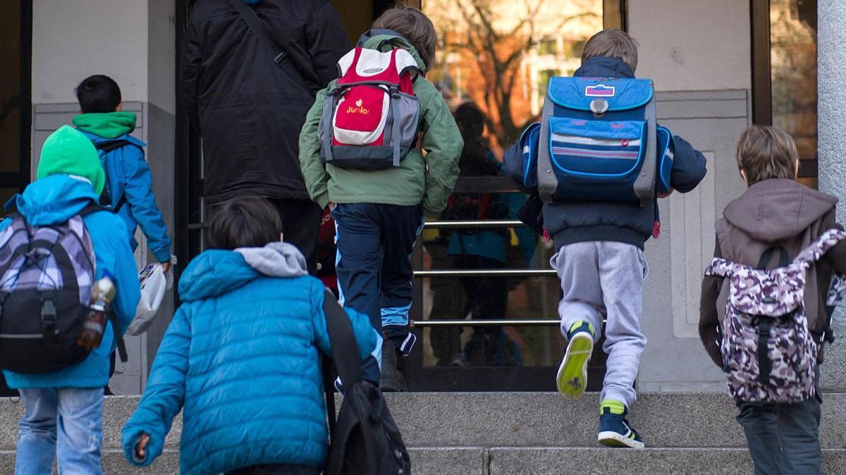 Schule lehnt Kind von AfD-Politiker ab - Empörung in der Partei