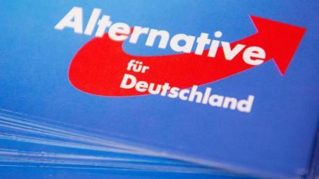 Das Logo der AfD ist auf einem Flyer zu sehen. Foto: Christophe Gateau/Archiv