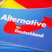Mehr als eine Million Wahlkampf-Flyer der AfD ist offenbar gar nicht erst verteilt worden.