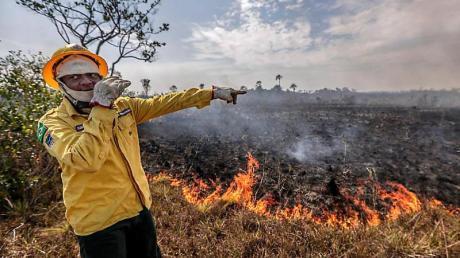 Ein Mitarbeiter der brasilianischen Umweltbehörde steht vor einem Brand. Foto: Gabriela Biló/XinHua