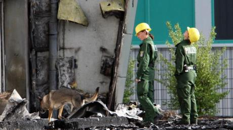 Spürhunde der Polizei vor einer abgebrannten Turnhalle in Potsdam. Ein Feuer hatte die geplante Flüchtlingsunterkunft zerstört.