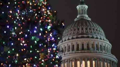 Ein Weihnachtsbaum vor dem Kapitol in Washington.