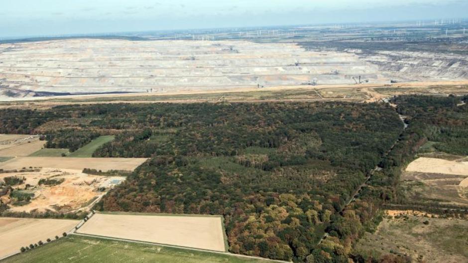 Der Hambacher Forst zwischen Köln und Aachen soll erhalten bleiben - im Hintergrund ist der Tagebau zu sehen.