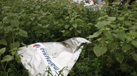 Ein Teil des Wracks der Boeing 777 der Malaysia Airlines liegt an der Absturzstelle nahe Donetsk.