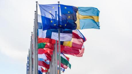Vor dem Gebäude des Europäischen Parlaments in Straßburg wehen die Flaggen der EU-Mitgliedsstaaten.