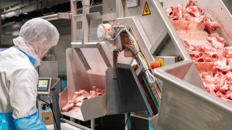Mit den Fleischfabriken gehen die Grünen hart ins Gericht. Künftig soll es mehr kleinere Betriebe geben.